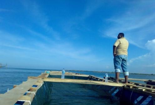 Informasi Tempat Wisata Pulau Sembilan dan Pulau Kampai serta Penjelasannya