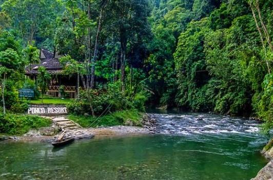 Review Tempat Kawasan Wisata Batu Katak Langkat Yang Banyak Dicari