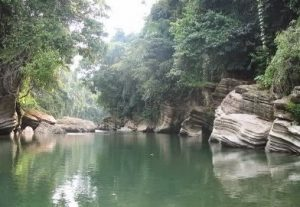 Ulasan mengenai tempat wisata Tangkahan Langkat yang unik